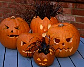 HALLOWEEN: PUMPKIN LANTERNS PLANTED WITH OPHIOPOGON PLANISCAPUS NIGRESCENS AND UNCINIA RUBRA