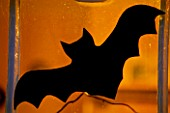 HALLOWEEN: BAT ON WINDOW CUT OUT OF PVC PONDLINER
