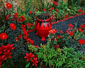 THE RED GARDEN WITH BLACK GRAVEL  RED AND BLACK POT WITH OPHIOPOGON PLANISCAPUS NIGRESCENS  RED LILIES  DAHLIA BISHOP OF LLANDAF AND ACHILLEA FANAL