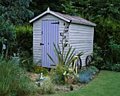 PAINTED WOODEN SHED SURROUNDED BY FESTUCA GLAUCA AND A PHORMIUM. DAVID AND MARIE CHASES GARDEN  HAMPSHIRE