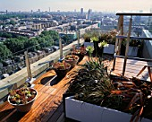 AFRICAN THEMED ROOF TERRACE- VIEW OVER LONDON: MIXED SEMPERVIRENS  PHORMIUM TENAX  P. PLATTS BLACK  AGAPANTHAS ALBA  CAREX BUCHANANII ON IROKO DECKING. DESIGN: S. WOODHAMS.