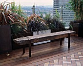 AFRICAN THEMED ROOF TERRACE: A PLACE TO SIT: RAILWAY SLEEPER BENCH  GLASS BALUSTRADE  POWDER COATED CONTAINERS INTERSPERSED WITH CONCRETE POTS WITH PHORMIUMS. DESIGN: S. WOODHAMS