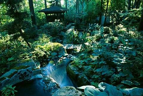 WATERFALL_TUMBLE_DOWN_A_HILL_INTO_THE_KOI_POND_WITH_INDONESIAN_GAZEBO_BESIDE_IT_IN_THE_WOODLAND__DES