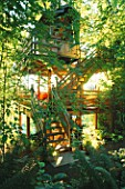 THE MULTI STOREY TREE HOUSE IN THE WOODLAND. DESIGNERS: ILGA JANSONS AND MIKE DRYFOOS  SEATTLE  USA