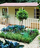 FAMILY POTAGER BY CLARE MATTHEWS: GRAVEL  CABBAGES  CLIPPED BOX AND BAY AND A SUMMERHOUSE