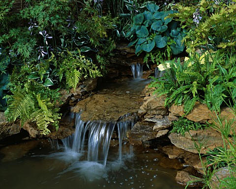 WATERFALL_WITH_HOSTAS_AND_FERNS_TATTON_PARK_2002__DESIGNER_PAUL_DYER