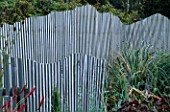 CURVED WINDBREAKS AT MARCHANTS HARDY PLANTS  EAST SUSSEX