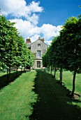AVENUE OF PLEACHED HORNBEAMS WITH THE HOUSE BEHIND. DESIGNER: ANGEL COLLINS