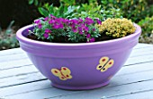 BUTTERFLY CONTAINER PLANTED WITH AUBRETIA  THYME  SCABIOUS AND MARJORAM. DESIGNERS: CLARE MATTHEWS/ NANCY MATTHEWS