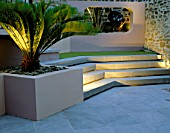 RAISED BED WITH CYCAS REVOLUTA  CONCRETE APERTURE WITH JELLY PALM (BUTIA CAPITATA) AND SCULPTURE LIT UP AT NIGHT IN SMALL COURTYARD. DESIGNER: AMIR SCHLEZINGER/MY LANDSCAPES