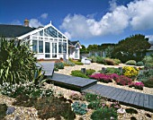 SEASIDE GARDEN  GUERNSEY: HOUSE WITH BOARDWALK  THRIFT  GRAVEL  HELIANTHEMUM WISLEY PRIMROSE  AGAVES  SEMPERVIVUMS  WOODEN GROYNES