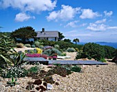 SEASIDE GARDEN  GUERNSEY: HOUSE  WOODEN BOARDWALK  THRIFT  GRAVEL  HELIANTHEMUM WISLEY PRIMROSE  AGAVES  SEMPERVIVUMS  WOODEN GROYNES