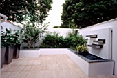 WHITE ROOF TERRACE WITH METAL CONTAINERS PLANTED WITH ZANTEDESCHIA AETHIOPICA  BETULA UTILIS VAR JACQUEMONTII DESIGNER  WATER FEATURE. DESIGN : AMIR SCHLEZINGER/ MY LANDSCAPES
