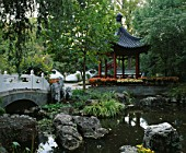 MISSOURI BOTANICAL GARDEN  ST LOUIS  USA: THE GRIGG NANJING FRIENDSHIP GARDEN  AN AUTHENTIC CHINESE GARDEN WITH PAVILION