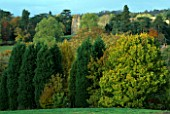 THE ARLEY ARBORETUM  WORCESTERSHIRE  IN AUTUMN: ARLEY CHURCH AND ARBORETUM.