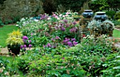 PETTIFERS  OXFORDSHIRE: BORDER BY THE HOUSE WITH PEONY BOWL OF BEAUTY  ALLIUM ALBOPILOSUM  STACHYS MACRANTHA SUPERBA AND LEAD URNS