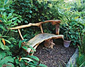 PETER REIDS GARDEN  HAMPSHIRE: BACK GARDEN - A PLACE TO SIT WITH JUNGLE STYLE WOODEN BENCH FROM THE PHILIPPINES. IN CONTAINER IS MELANOSELINUM DECIPIENS