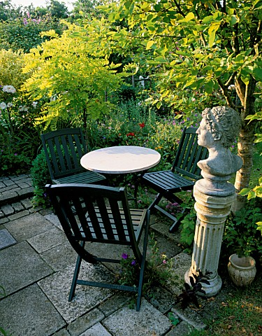 WOODCHIPPINGS__NORTHANTS_TABLE_AND_CHAIRS_BESIDE_ALNUS_INCANA_AUREA_AND_THE_ENGLISH_ROSE_BARBARA_AUS