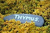DESIGNER: CLARE MATTHEWS: THYME LABEL MADE FROM SLATE