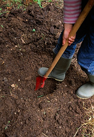 DESIGNER_CLARE_MATTHEWS_STUMPERY_PROJECT__GIRL_DIGGING_HOLE_FOR_LOGS
