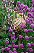 THE ABBEY HOUSE  WILTSHIRE: CHIVES FLOWERING IN THE HERB GARDEN WITH THE PANTHEON CERAMIC SCULPTURE BY CHERYL DEDMAN