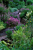 THE ABBEY HOUSE  WILTSHIRE: RAISED WOODEN BEDS IN THE HERB GARDEN WITH FLOWERING CHIVES