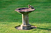 STONE BIRD BATH WITH TWO DOVES.  ST. MICHAELS HOUSE  KENT