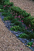 BOX HEDGING  GRAVEL  SLATE AND THRIFT IN THE PARTERRE. PARSONAGE  OMBERSLEY  WORCESTERSHIRE