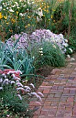 BRICK PATH AND BORDER PLANTED WITH PENNISETUM ORIENTALE  PENNISETUM VILLOSUM  LEEKS AND ASTER PYRENAEUS LUTETIA.  MARCHANTS HARDY PLANTS  SUSSEX