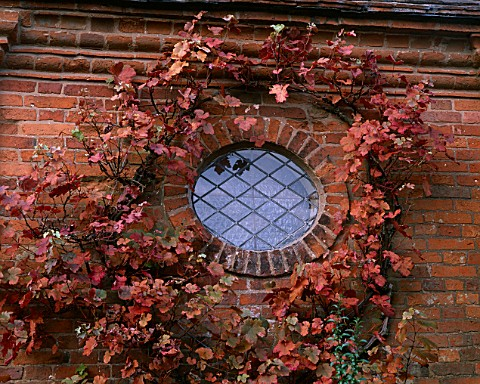 PACKWOOD_HOUSE__WARWICKSHIRE_AUTUMNAL_VINE_AROUND_SMALL_WINDOW_IN_TOWER