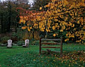 GREYSTONE COTTAGE  OXFORDSHIRE: A METAL STILE BENEATH A CHERRY TREE ON THE LAWN IN AUTUMN WITH ADIRONDACK CHAIRS IN BACKGROUND