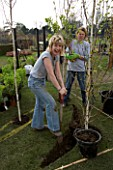 LADY GARDENERS AT THE GREAT GARDEN CHALLENGE  BLENHEIM PALACE  OXFORD