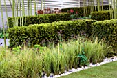STIPA ARUNDINACEA AND BLOCKED YEW HEDGING  IN HIS LATE HIGHNESS SHAIKH ZAYED BIN SULTAN AL-NAYHANS GARDEN BY CHRISTOPHER BRADLEY-HOLE. CHELSEA 2005