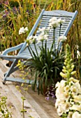 DECK WITH BLUE CHAIR AND TERRACOTTA CONTAINER WITH WHITE AGAPANTHUS. DESIGNERS: CLAIRE KNIGHT AND LINDA POLLARD