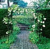 PATH LEADING TO SEAT IN ARBOUR WITH CLIMBING ROSE ADELAIDE DORLEANS. LOWER HALL GARDEN  SHROPSHIRE