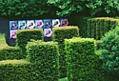RIDLERS GARDEN  SWANSEA  WALES: VIEW ACROSS YEW HEDGES TO BLACK WALL AND ANDY WARHOL STYLE HELLEBORE PICTURES. DESIGNER: TONY RIDLER