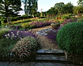 CLARE MATTHEWS GARDEN  DEVON: THE GRAVEL GARDEN WITH ERIGERON  NEPETA WALKERS LOW  FOXGLOVES  SLATE  LARGE EMPTY URN (CONTAINER)  AND WOODEN THRONE CHAIR