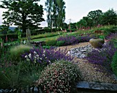 CLARE MATTHEWS GARDEN  DEVON: THE GRAVEL GARDEN WITH ERIGERON  NEPETA WALKERS LOW  FOXGLOVES  SLATE  LARGE EMPTY URN (CONTAINER)  AND WOODEN THRONE CHAIR1