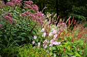 MAYROYD MILL HOUSE  YORKSHIRE. DESIGNERS RICHARD EASTON AND STEVE MACKAY. BORDER WITH HELENIUMS  POLYGONATUM  AND EUPATORIUM