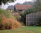 MISTY MORNING AT MARCHANTS HARDY PLANTS  SUSSEX - STIPA ARUNDINACEA  MISCANTHUS SINENSIS STRICTUS WITH PLANT PAVILION BEHIND