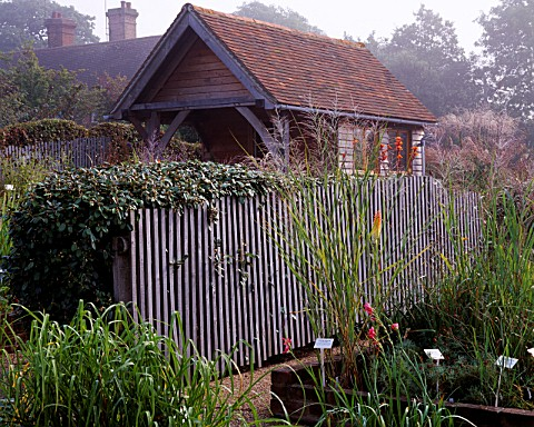 MISTY_AUTUMN_MORNING_AT_MARCHANTS_HARDY_PLANTS__SUSSEX_THE_NURSERY_AREA_WITH_PLANTPAVILION_AND_ELEAG