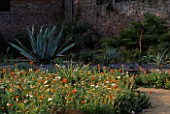 PAN GLOBAL PLANTS  GLOUCESTERSHIRE: THE WALLED GARDEN WITH AGAVE AMERICANA IN THE FOREGROUND