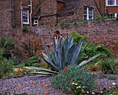 PAN GLOBAL PLANTS  GLOUCESTERSHIRE: NICK MACER STANDS BEHIND A MASSIVE AGAVE AMERICANA IN THE WALLED GARDEN