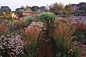 AUTUMN BORDER OF MIXED GRASSES AND PERENNIALS  HOUSE IN BACKGROUND: MARCHANTS HARDY PLANTS  SUSSEX - GAURA LINDHEIMERI  MOLINIA KARL FOERSTER  PENNISETUM SETACEUM