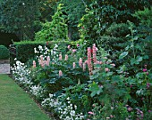 HALL FARM  LINCOLNSHIRE: PINK BORDER WITH LUPINS  PAPAVER ORIENTALE HELEN ELIZABETH  HOLLYHOCKS AND NEMESIA INNOCENCE