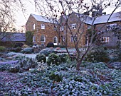 THE HOUSE AT PETTIFERS  OXFORDSHIRE  IN FROST  WITH ASTRANTIAS AND A MAPLE. WINTER  GARDEN