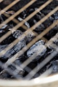 BARBEQUE PROJECT: COALS BURNING WHITE UNDER METAL GRILL