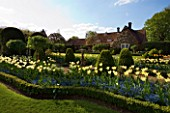 SPRING AT CHENIES MANOR HOUSE  BUCKINGHAMSHIRE: SUNDIAL BEDS PLANTED WITH BLUE FORGET-ME-NOTS AND TULIP DREAMING GIRL