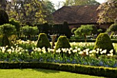 CHENIES MANOR GARDEN  BUCKINGHAMSHIRE SUNDIAL BORDERS IN SPRING PLANTED WITH FORGET-ME-NOTS AND TULIP DREAMING GIRL