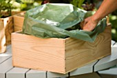 DESIGNER: CLARE MATTHEWS -  VEGETABLE BOX PROJECT - FILLING BOX WITH GREEN PLASTIC LINER